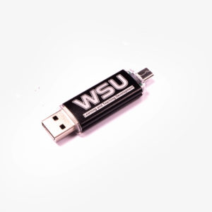 Mobile Phone Memory Stick OTG2